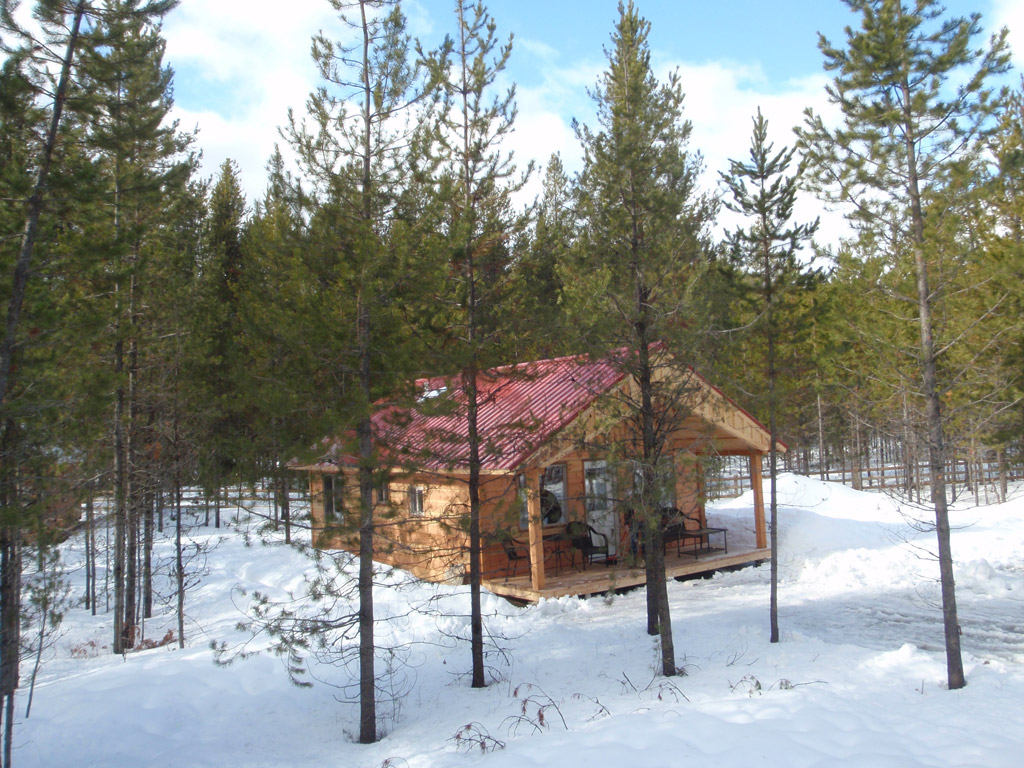 Pin cabin in winter jpegjpg on pinterest for Reclusive moose cabins