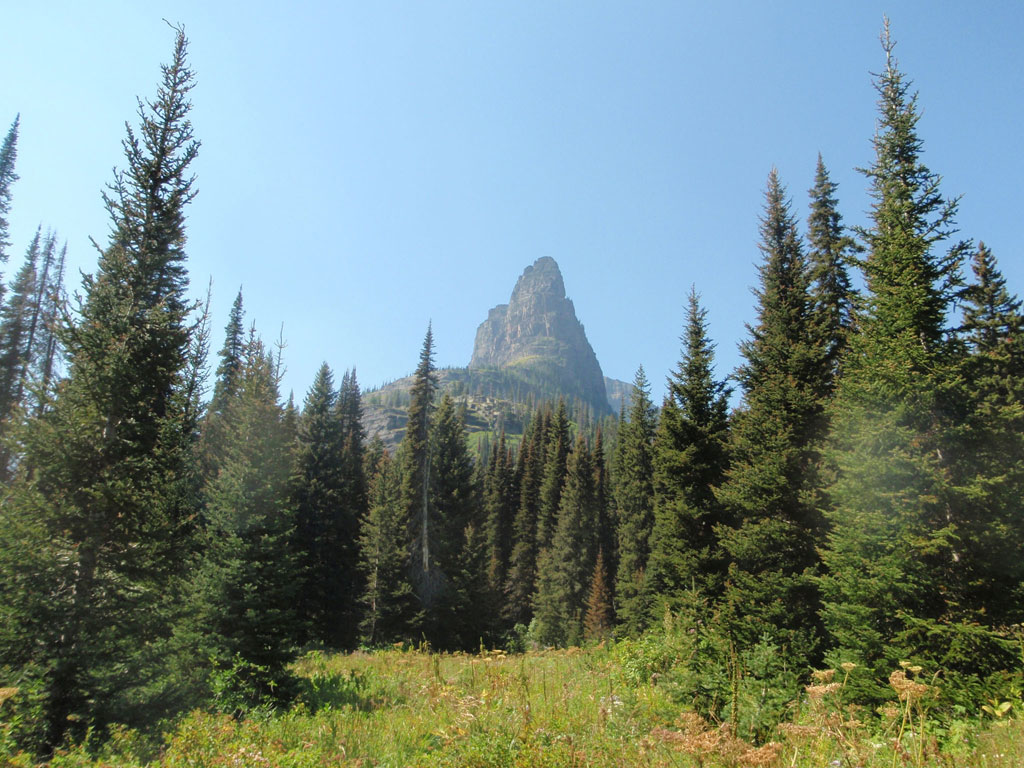 Summer in glacier national park galleries reclusive for Reclusive moose cabins