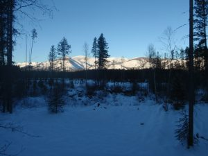 View from Reclusive Moose in Winter